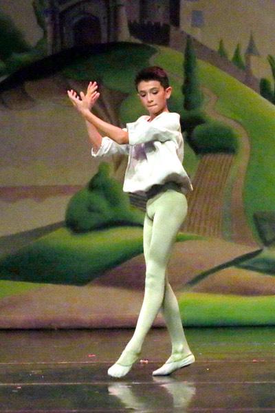Student essays ballet